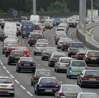 Loose cattle cause delays on M25