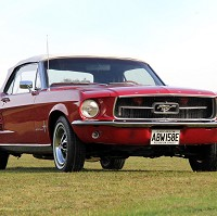Game of Thrones star to sell Mustang