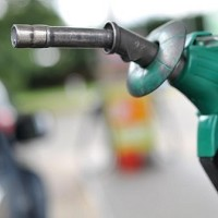 Fuel prices fall amid Treasury call