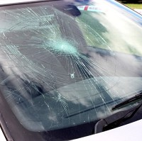 Study reveals odd windscreen damage
