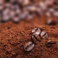 Coffee has right blend for biofuel