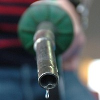 Fuel costs 'holding firms back'