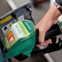 Inflation holds despite fuel costs