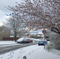 Unseasonal snow affects bank holiday travel